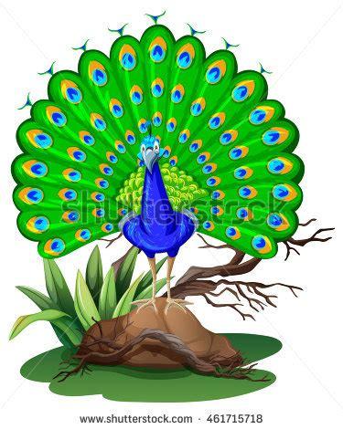 My favourite bird peacock essay in hindi - Lynch Hill School